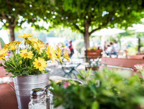 Gelbe Blumen am Tisch