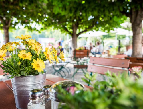 Gelber Blumen im Biergarten